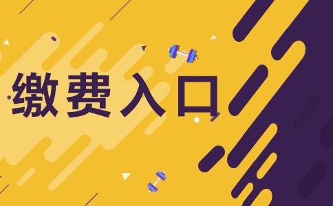 2020云南保山市事业单位招聘缴费时间及入口