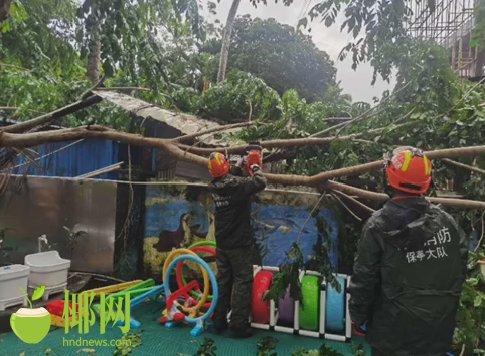 """受台风""""红霞""""影响大树倒塌幼儿园 海南保亭消防冒雨处置"""