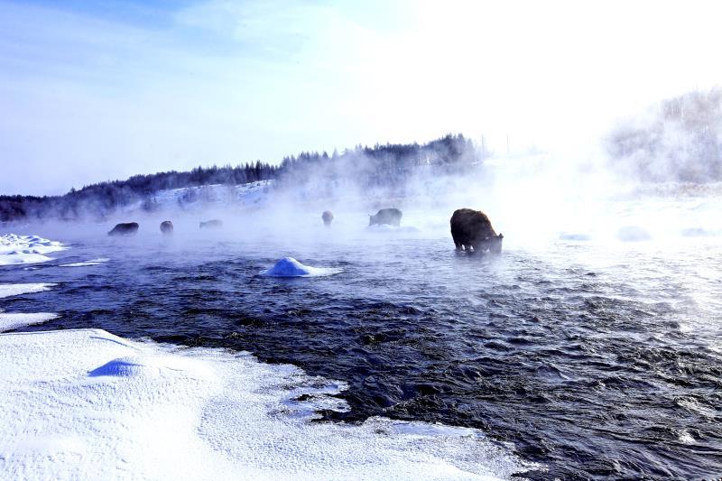 """""""欢乐冰雪季  亮丽内蒙古""""内蒙古冬季文化旅游全国推广活动即将开启"""