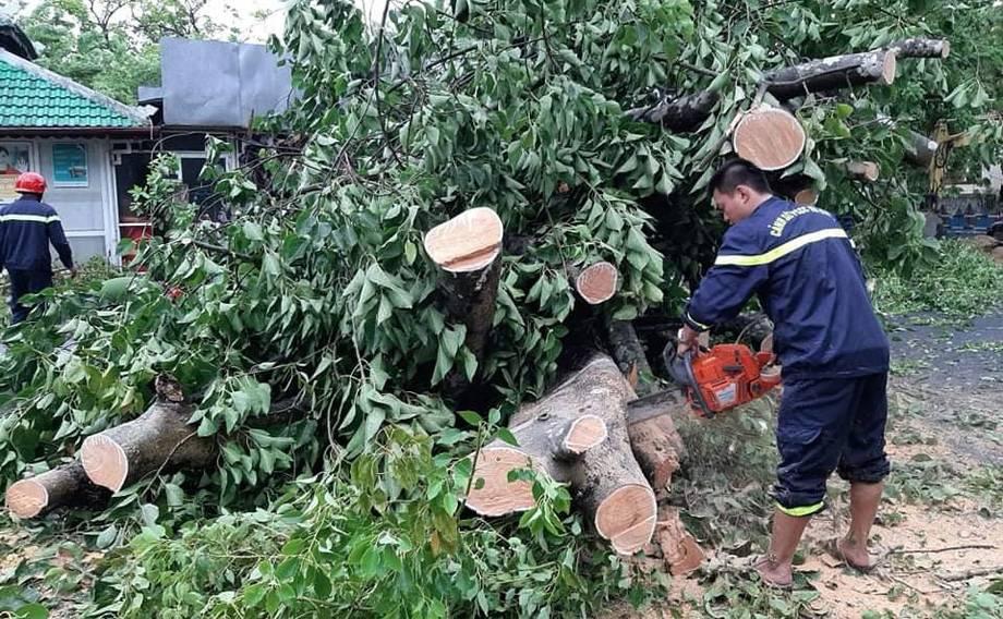 """强热带风暴""""红霞""""在越南中部沿海登陆"""