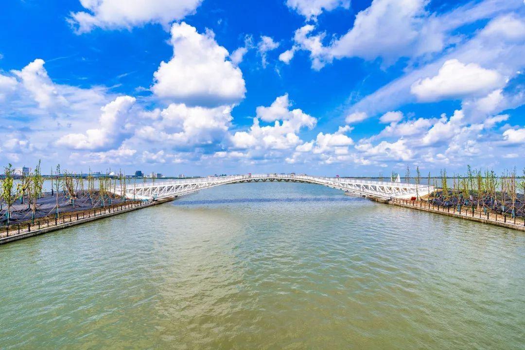 【探索】滴水湖环湖景观带7座桥征名揭晓啦→