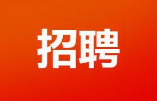 枣庄市第二十八中学招聘!大专起报