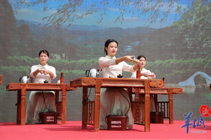 """潮州饶平:岭头单丛茶""""对抗"""""""