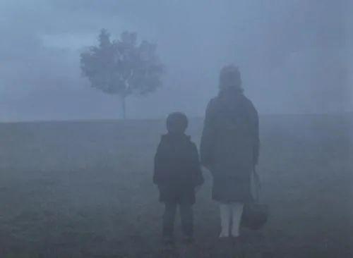 《雾中风景》:迷雾重重的生命之旅,我们无人能够逃脱