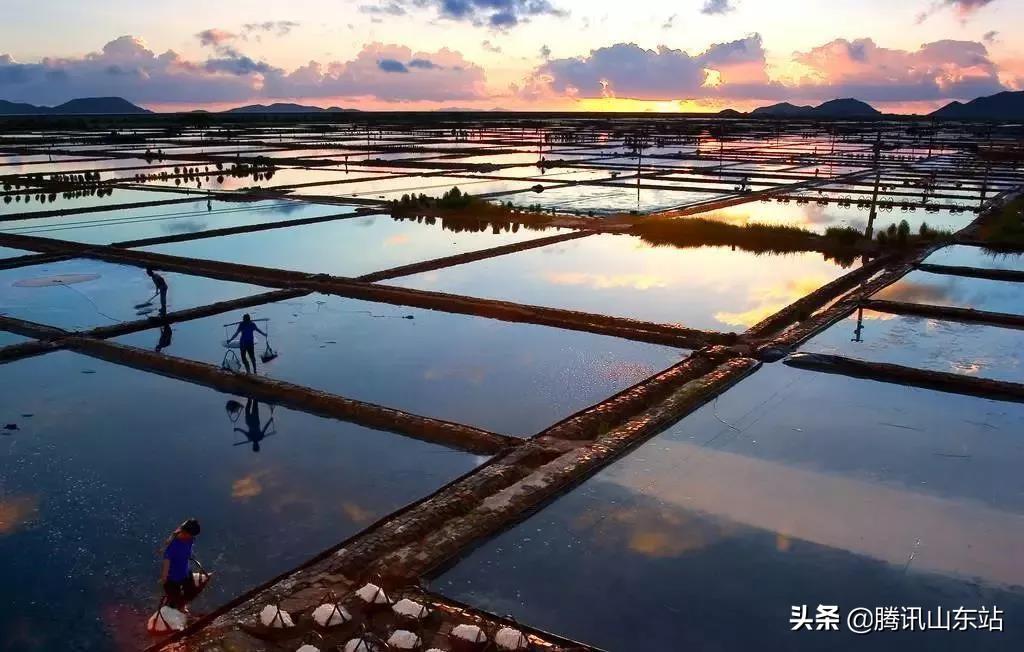 首届中国滨州虾节暨生态盐田虾文化节即