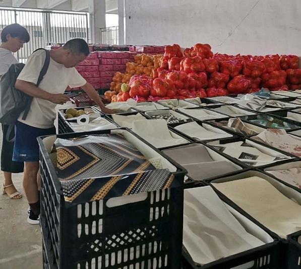 长兴岛也有了大型水果交易中心,润稼果市首开净果交易先例