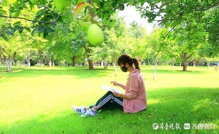金秋周末秋色初染,济南植物园度过金色的休闲时刻