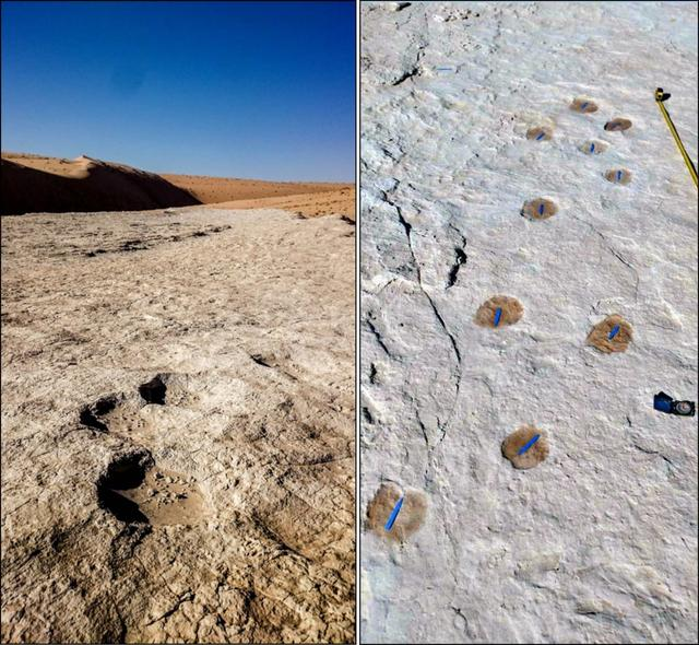 考古学家在沙特发现距今12万多年前的人类脚印