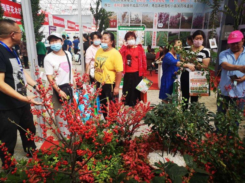 昌邑绿色博览会开幕