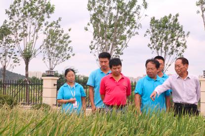 三年销售农产品5400亿 阿里:数字技术会让农产品成为商品图片