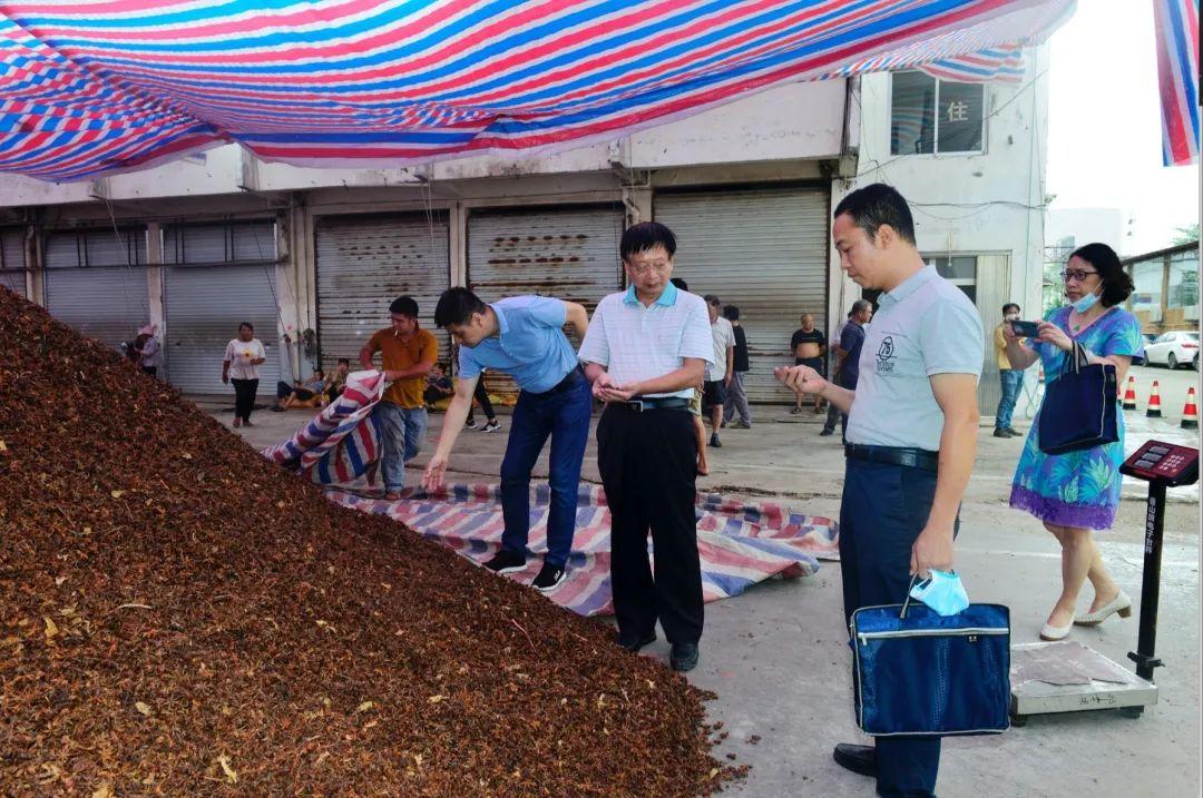 广西市场羁系部分法律职员在开展专项查抄