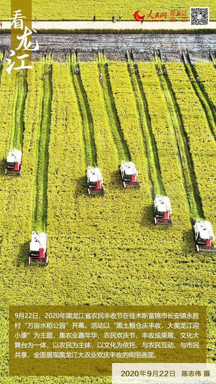 【看龙江】2020年黑龙江省农民丰收节开幕
