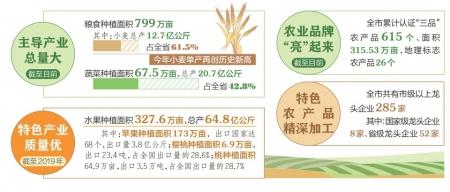 【庆丰收 迎小康——2020中国农民丰收节】运城打造现代农业发展新标杆