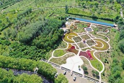 南湖花田各种花卉竞相开放 人在花丛中 花在人身旁