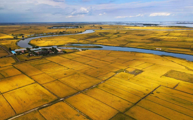 吉林白城农民丰收节开幕 水稻早熟品种受台风影响较小