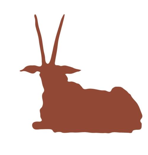 物流点惊现42公斤羚羊角 检察官发现三级交易链条,追加漏犯13人图片