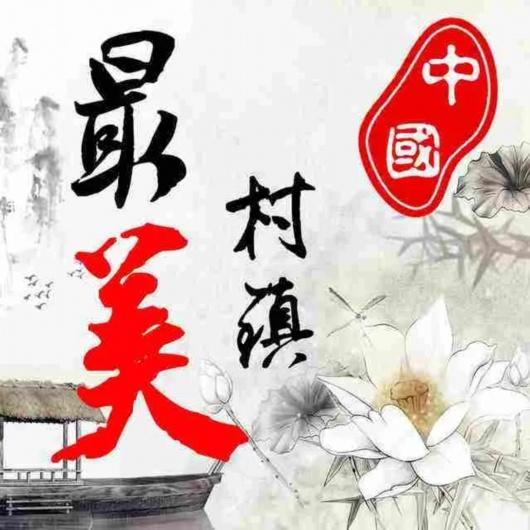 """""""2020中国最美村镇""""评选活动开始啦,嘉定也有街镇入围哦!"""