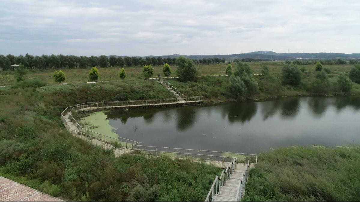 辽河生态景观建设:辽河湾湿地公园——项目工程三阶段 生态环境大改善