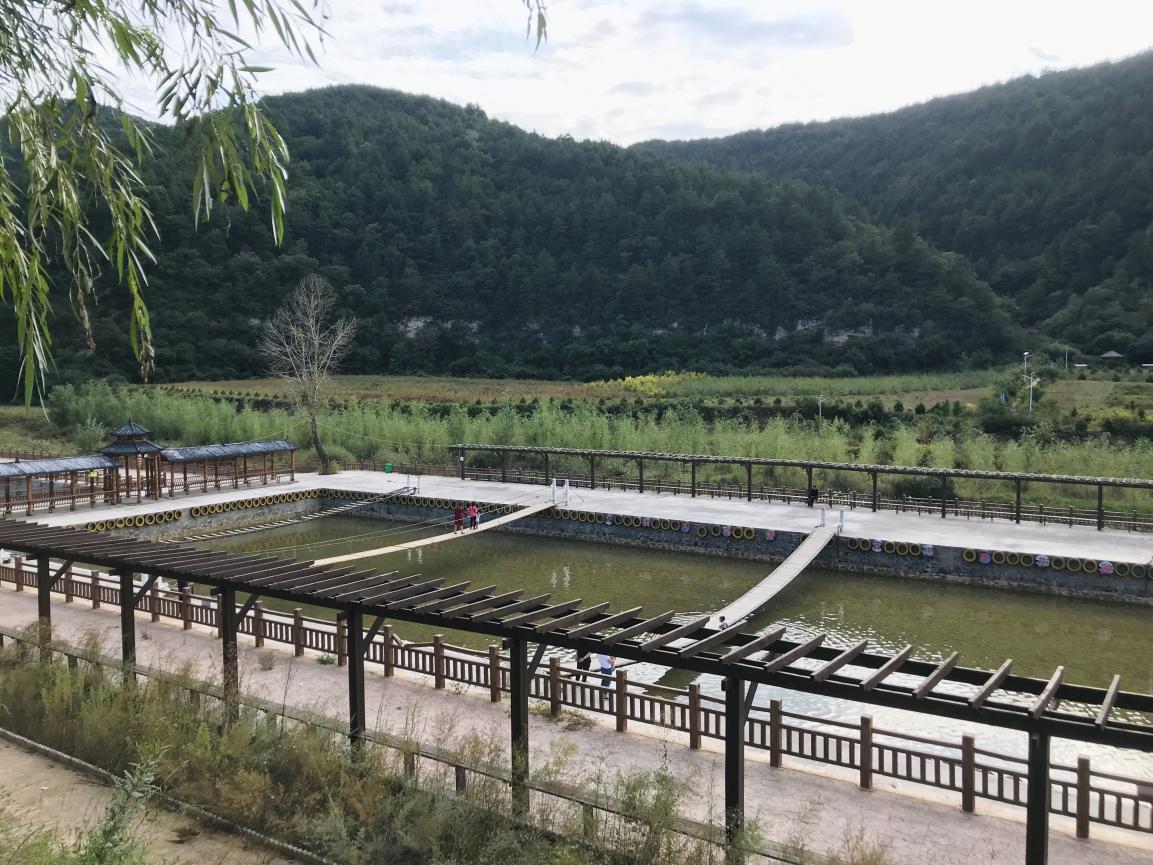 【中国梦·黄河情】探访脱贫蝶变的王湾村:特色产业发展让乡亲们走上致富路图片