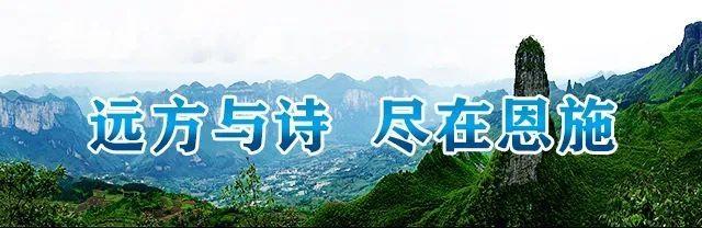 """恩施市核桃坝村""""乡贤夜话""""听民声解难题"""