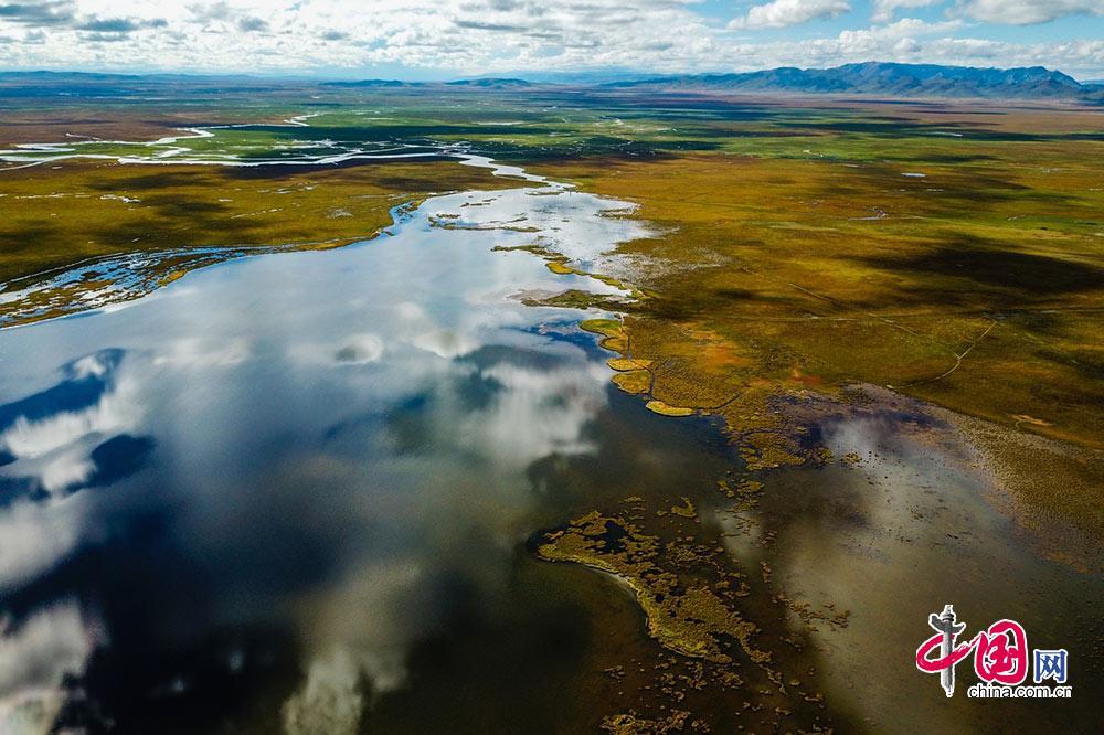 【中国梦·黄河情】邂逅若尔盖 观黄河生态发展之变图片