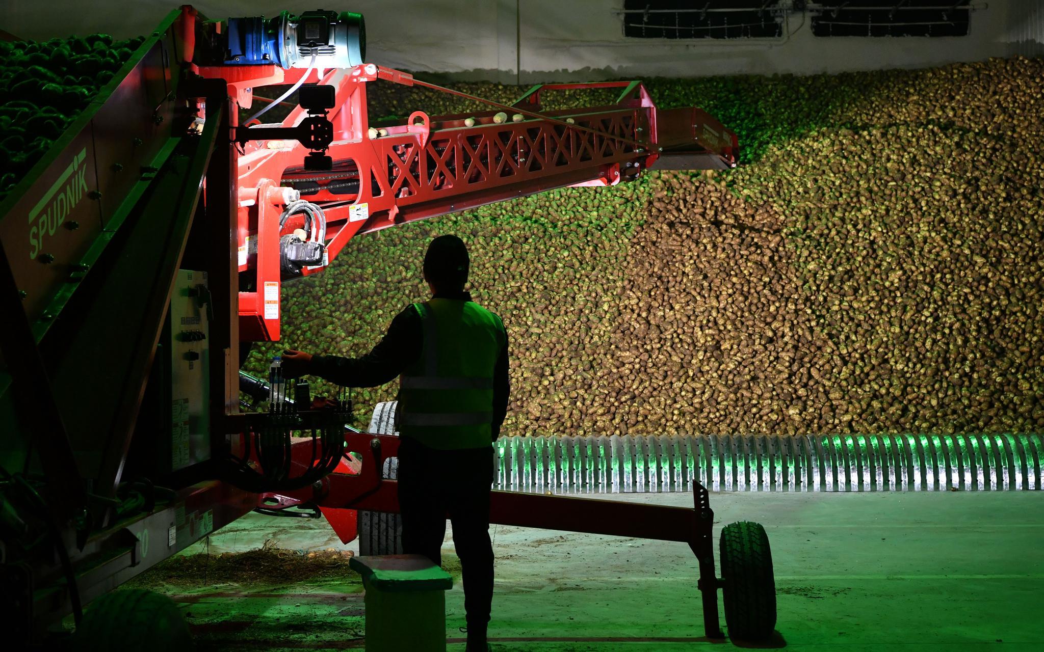 """做薯条、酿黄酒……北京房山区对口帮扶有这些""""法宝"""""""