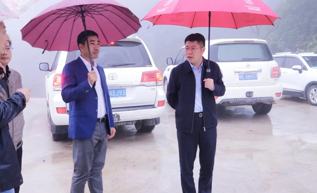 杨秀福调研德兴市矿山生态环境治理修复工作