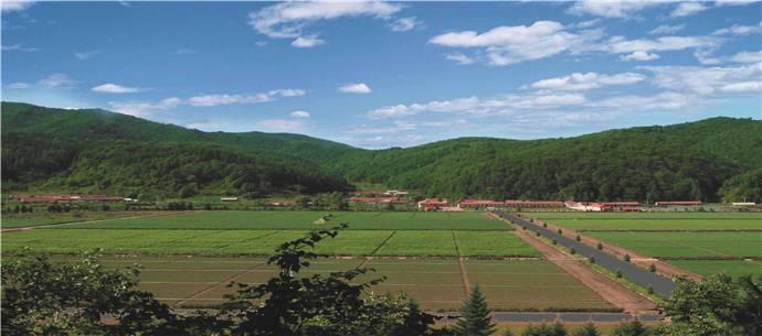 吉林省林草、花卉、果树种苗展销会即将启幕