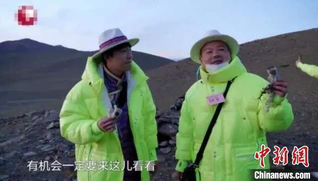 """官方回应""""综艺嘉宾采摘西藏珍稀植物"""":已介入调查"""