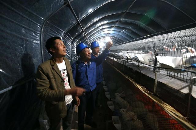 优质电务护航只需一周 中江农民装电源