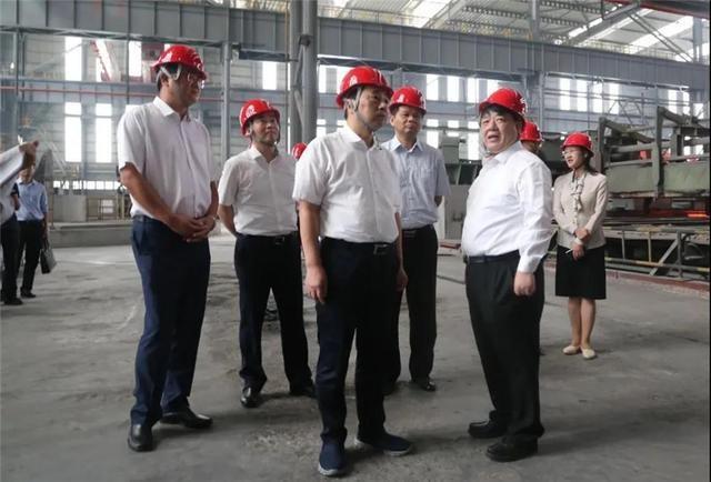 镇江市委书记马明龙调研江苏飞达集团