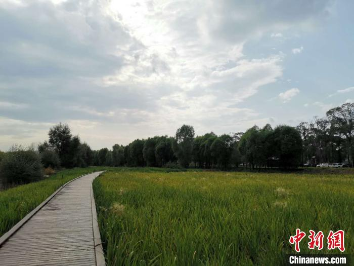 汾河川国度湿地公园 李京泽 摄