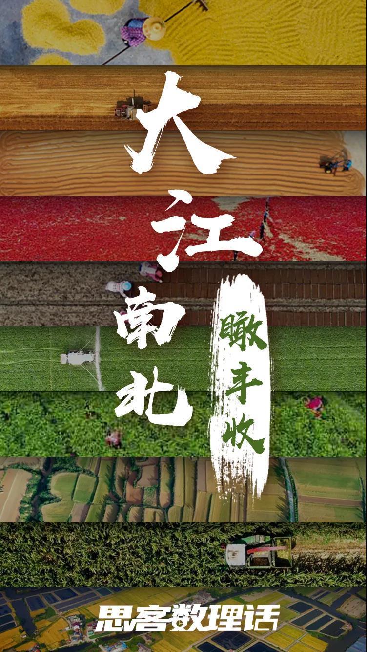 特殊之年,夏粮十七连丰、秋粮丰收在望……背后什么在起作用?图片