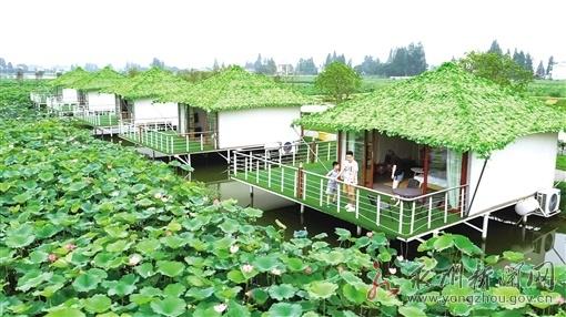 鱼米之乡绘新卷——安乡县推进农业产业化、高质量发展见闻