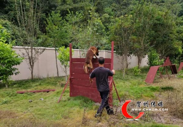 贺州CPPCC机关努力帮助八步区南翔镇江平