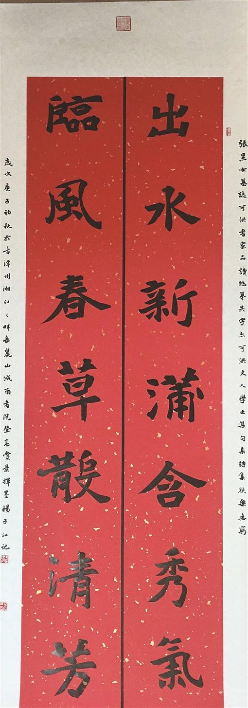 杨方华自学书法上国展