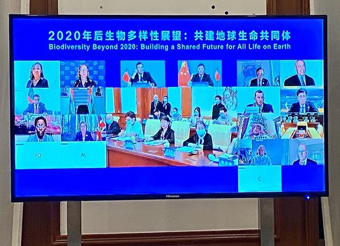 黄润秋主持部长级会议:各方应主动为生物多样性保护调动资源图片