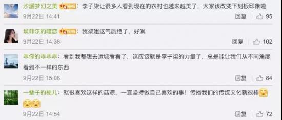 讲中国故事的博主正在变多,李子柒为什么不可复制?
