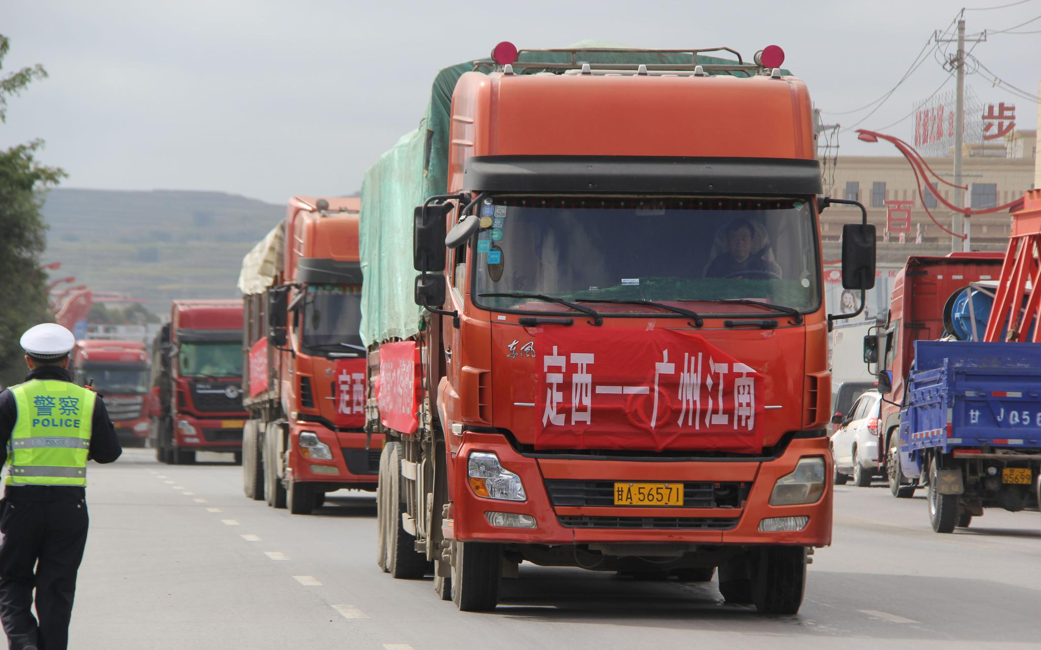 甘肃定西马铃薯进入收获季节 即将与北京市民见面图片