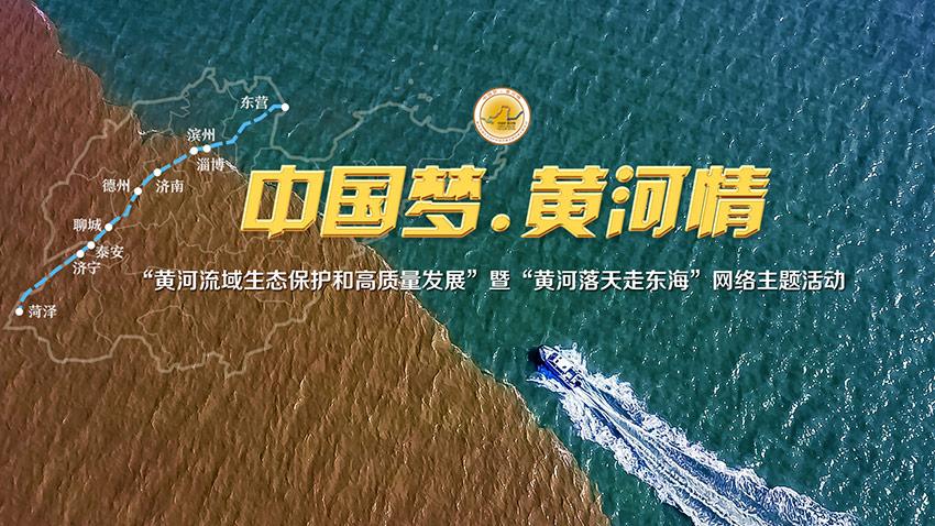 【中国梦·黄河情】黄河万里入胸怀!齐鲁大地奏响幸福大河新乐章图片