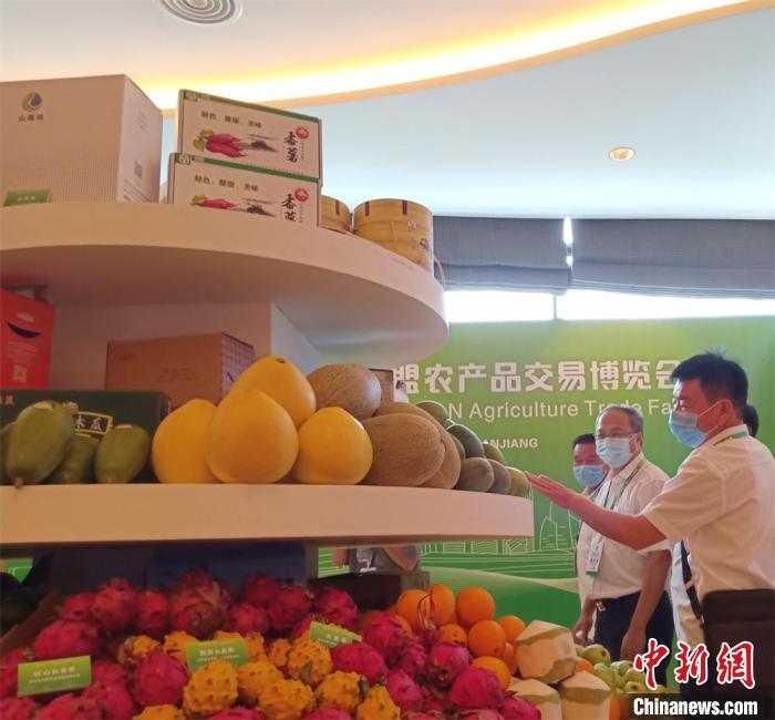 第五届广东·东盟农博会在广东湛江举办