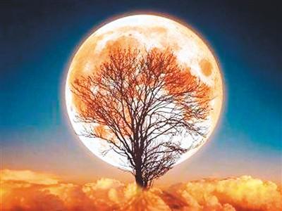 月亮跟着我走