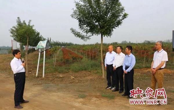 正阳县淮河生态经济带建设受到驻马店市人大领导称赞