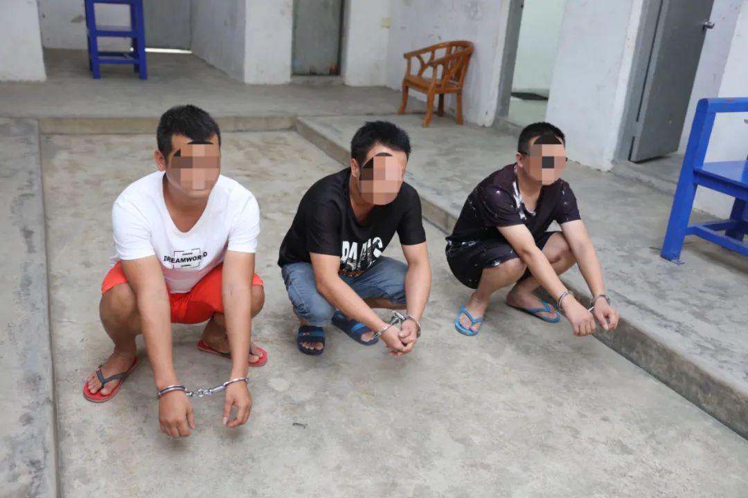 参与电信网络诈骗!3名嫌疑人被潮南公安刑拘