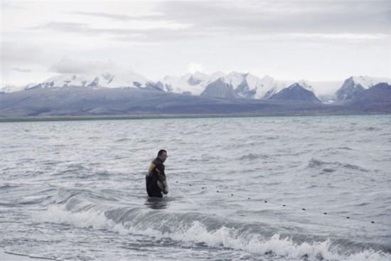 西藏完成世界首个裂腹鱼类基因组图谱