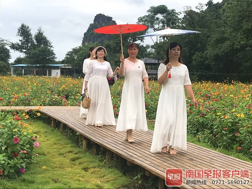 """桂林市七星区向阳乡:""""龙门花海""""唱山河"""