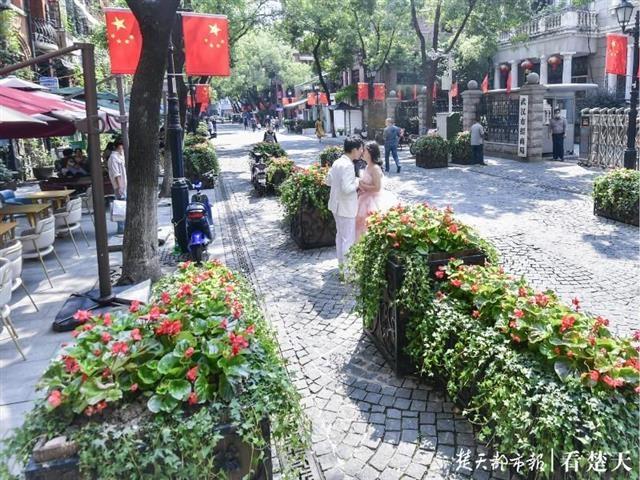 国庆来武汉偶遇朵朵幸福小花吧!千万盆草花夹道欢迎,百余处街景缀花醉你心……