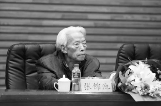 著名古典文学专家张锦池逝世图片