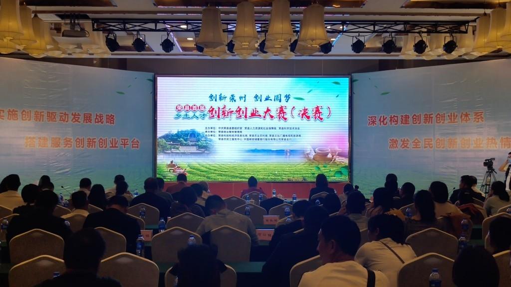 """厉害!荣县这个""""双创""""项目把茶叶机采率提高到72%"""