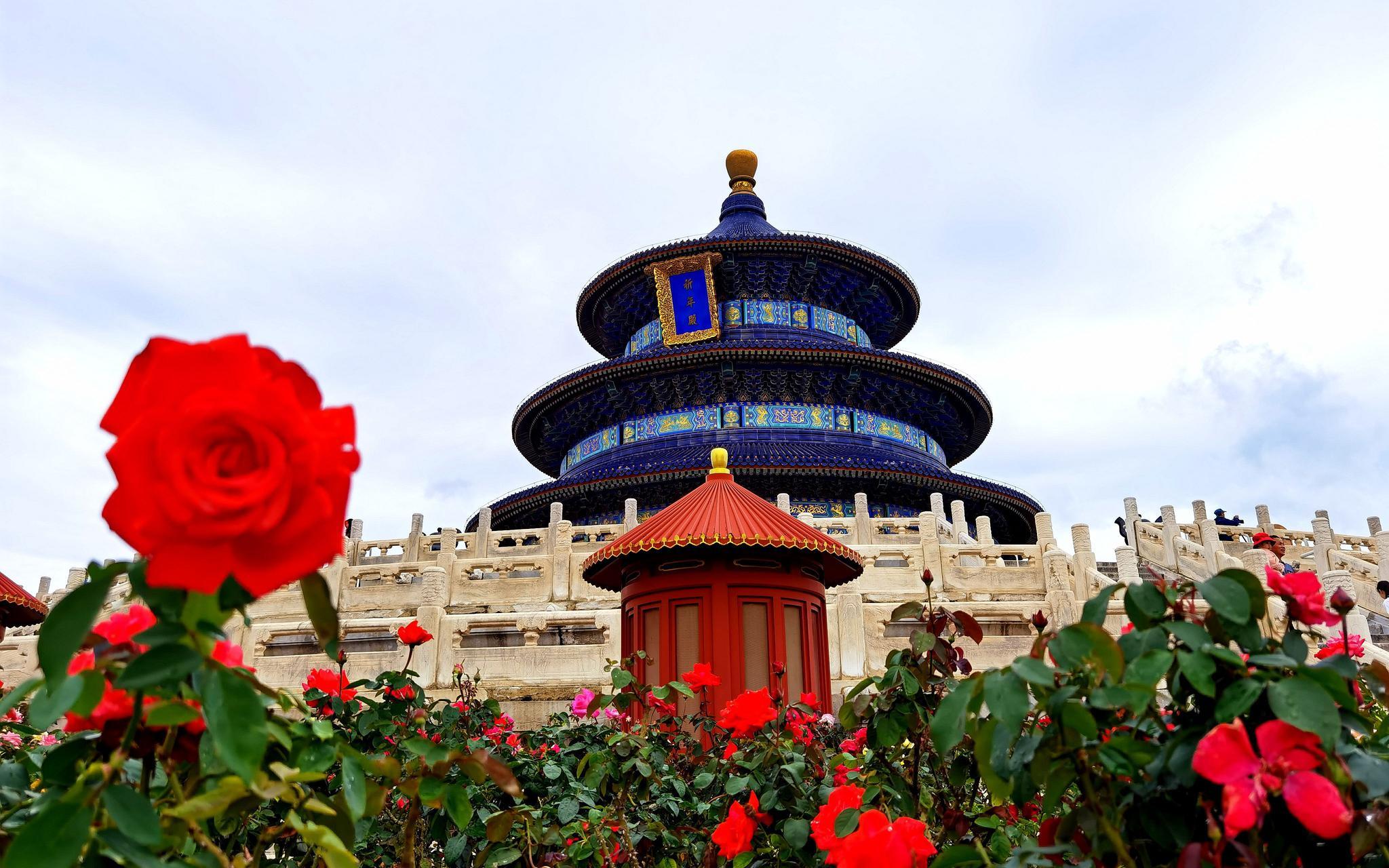 北京市属公园预约限流比例调至75%,40项游园活动迎双节图片